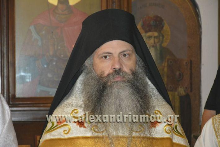 alexandriamou_pauleia_kapetan_kapsalhs1043