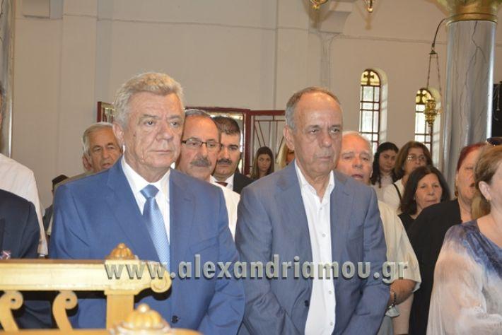 alexandriamou_pauleia_kapetan_kapsalhs1047