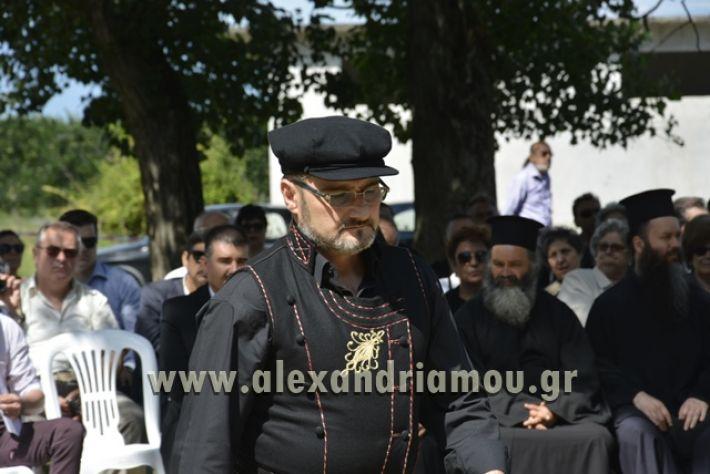 alexandriamou_pauleia_kapetan_kapsalhs1109