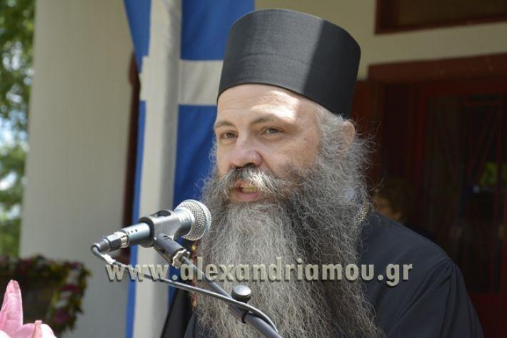 alexandriamou_pauleia_kapetan_kapsalhs1232