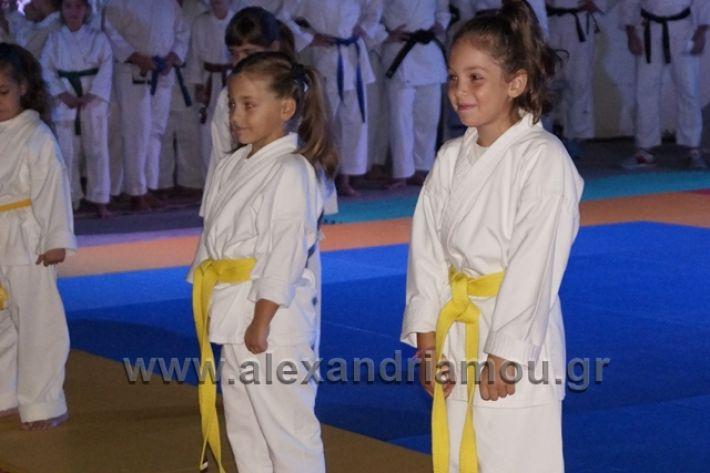 alexandriamou.gr_karate288005