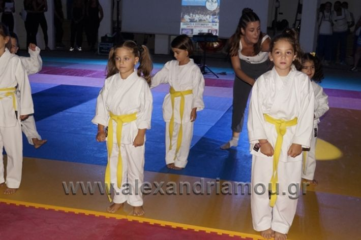 alexandriamou.gr_karate288007