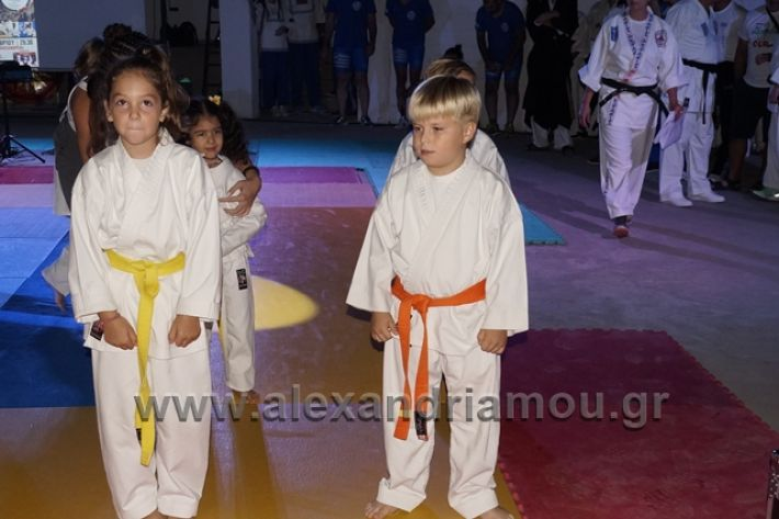 alexandriamou.gr_karate288008