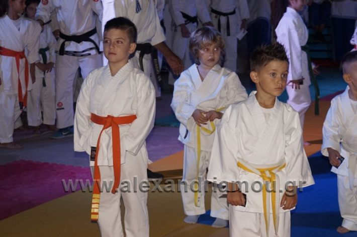 alexandriamou.gr_karate288009