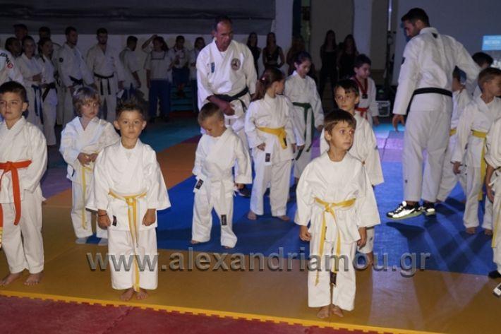 alexandriamou.gr_karate288010
