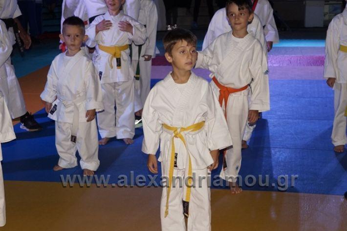 alexandriamou.gr_karate288011
