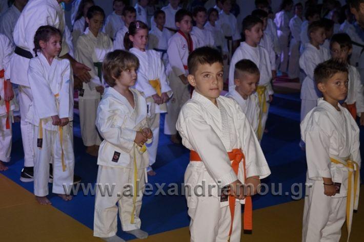 alexandriamou.gr_karate288013