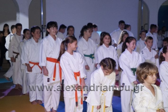 alexandriamou.gr_karate288014