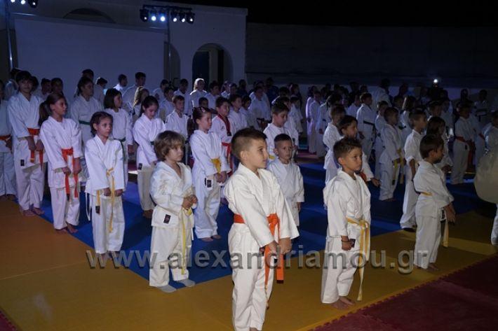 alexandriamou.gr_karate288015