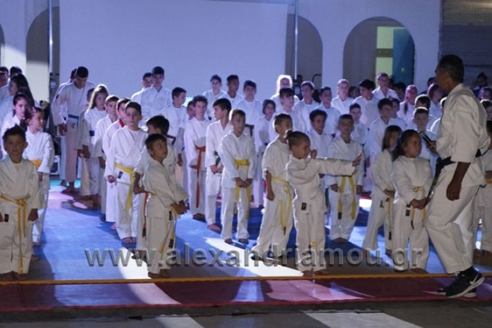 alexandriamou.gr_karate288018