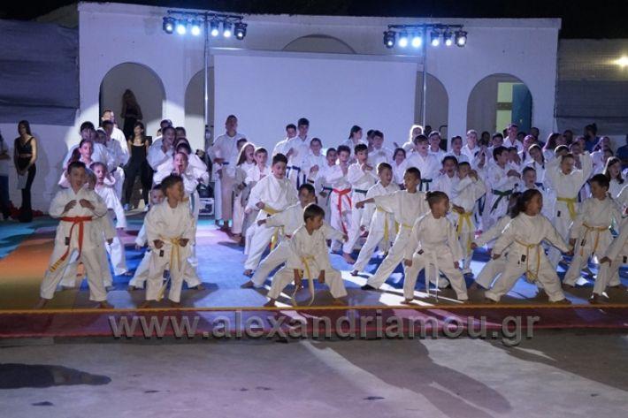 alexandriamou.gr_karate288019
