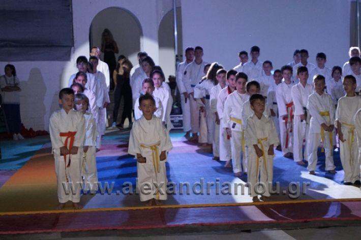 alexandriamou.gr_karate288020
