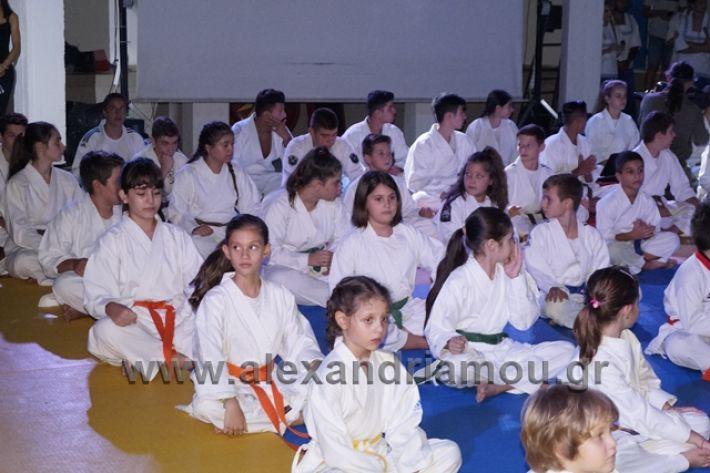 alexandriamou.gr_karate288029