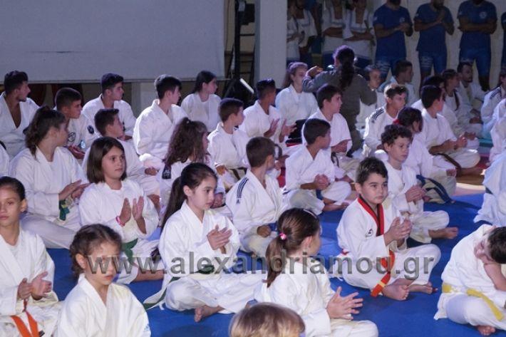 alexandriamou.gr_karate288030