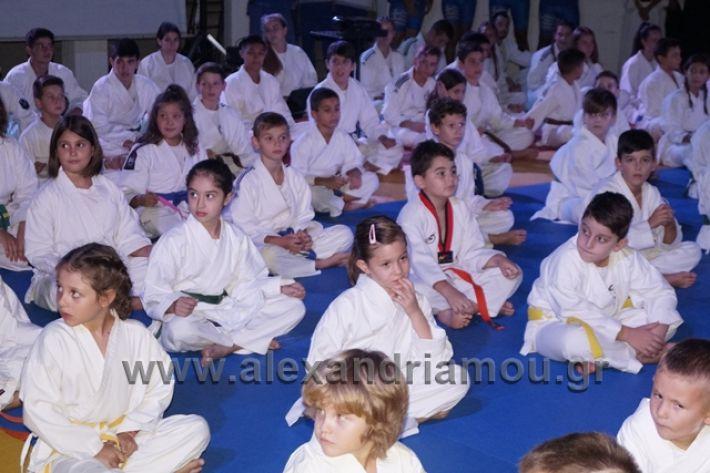 alexandriamou.gr_karate288032