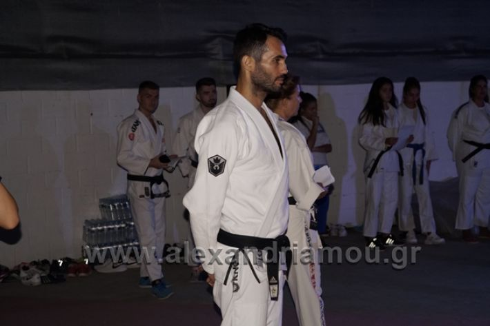 alexandriamou.gr_karate288036