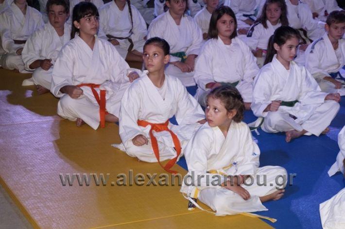 alexandriamou.gr_karate288039