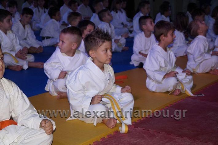 alexandriamou.gr_karate288040