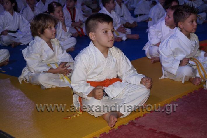 alexandriamou.gr_karate288041