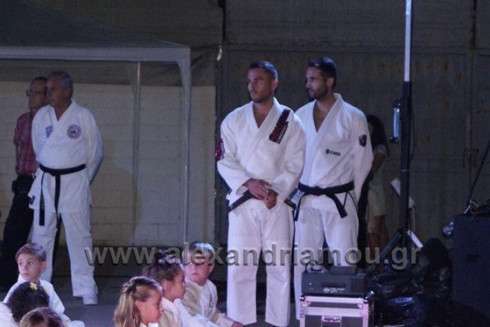 alexandriamou.gr_karate288053