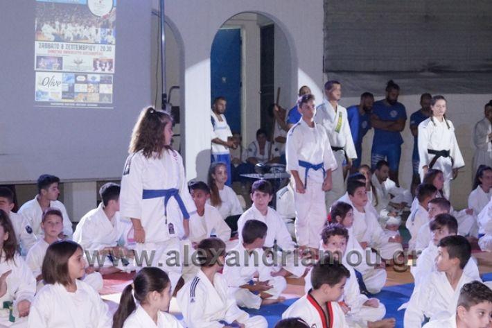 alexandriamou.gr_karate288054