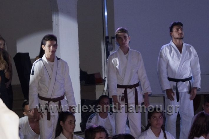 alexandriamou.gr_karate288056