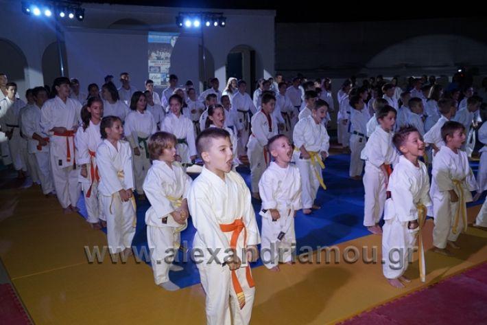 alexandriamou.gr_karate288061