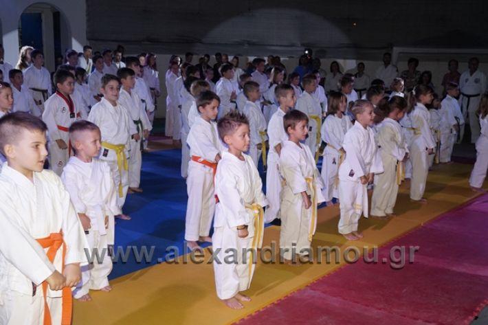alexandriamou.gr_karate288062