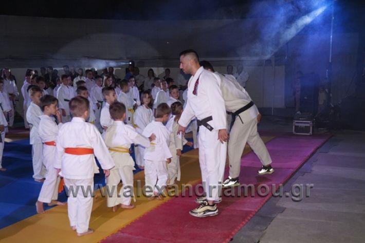 alexandriamou.gr_karate288063