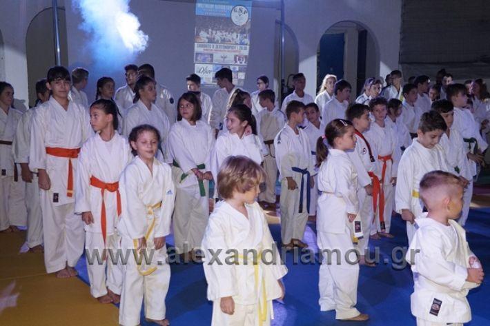 alexandriamou.gr_karate288064
