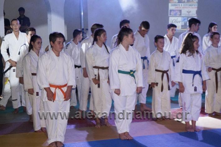alexandriamou.gr_karate288065