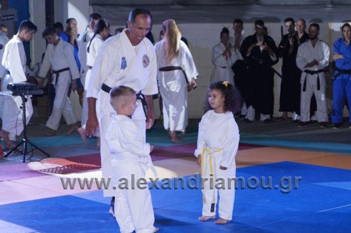 alexandriamou.gr_karate288066