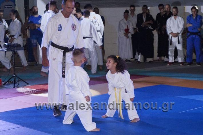 alexandriamou.gr_karate288067