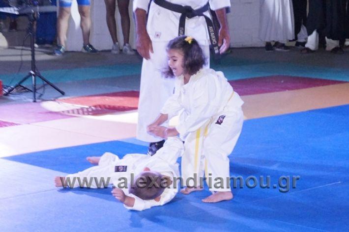 alexandriamou.gr_karate288069