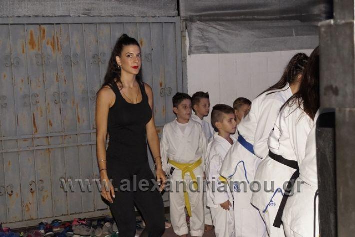 alexandriamou.gr_karate288072