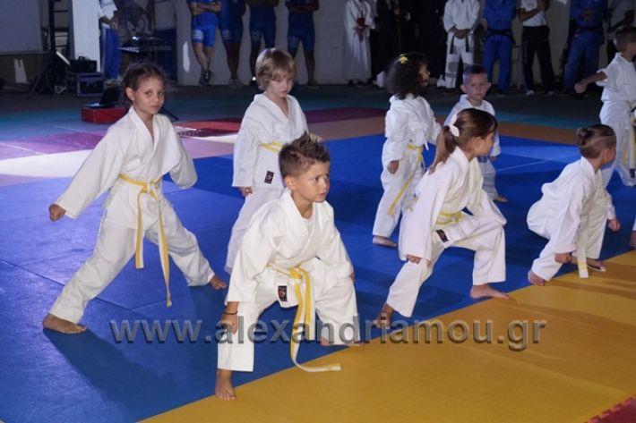alexandriamou.gr_karate288073