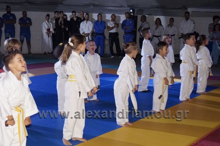 alexandriamou.gr_karate288074