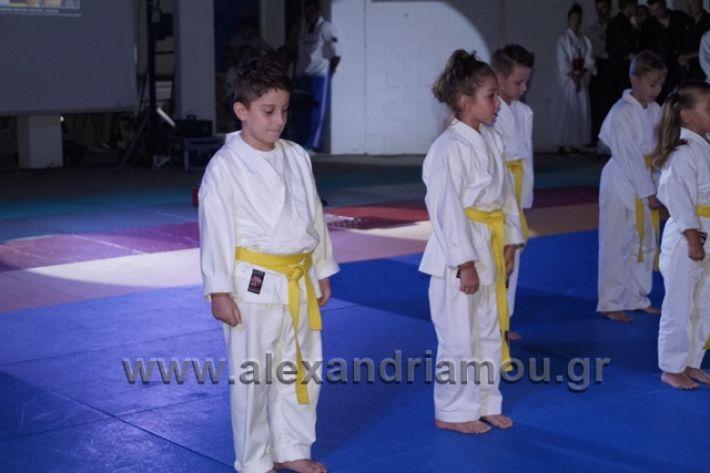 alexandriamou.gr_karate288078