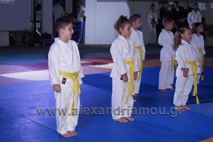 alexandriamou.gr_karate288079
