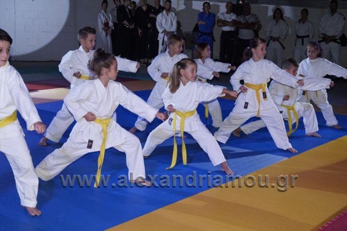 alexandriamou.gr_karate288080