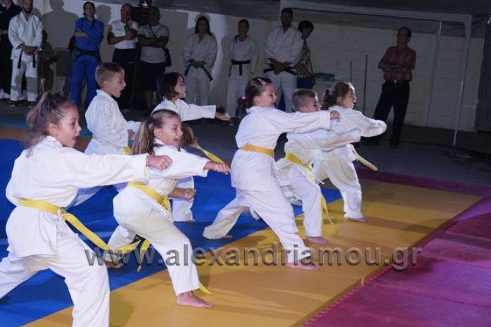 alexandriamou.gr_karate288081