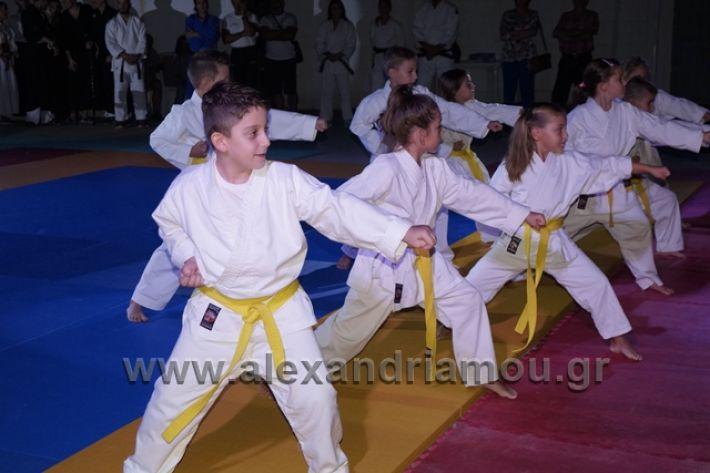 alexandriamou.gr_karate288082