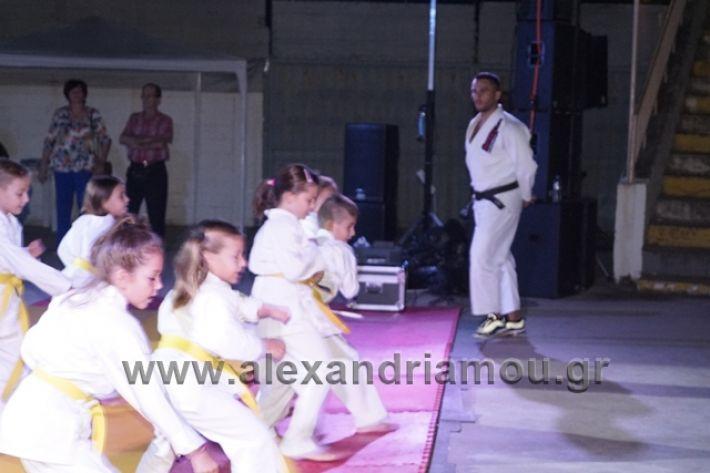 alexandriamou.gr_karate288083