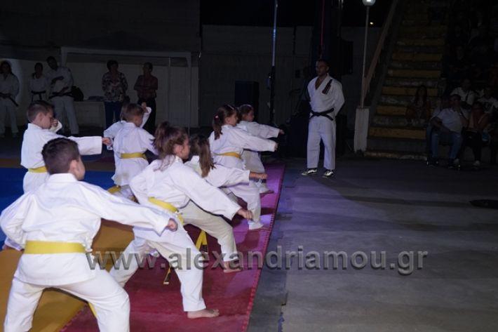alexandriamou.gr_karate288084