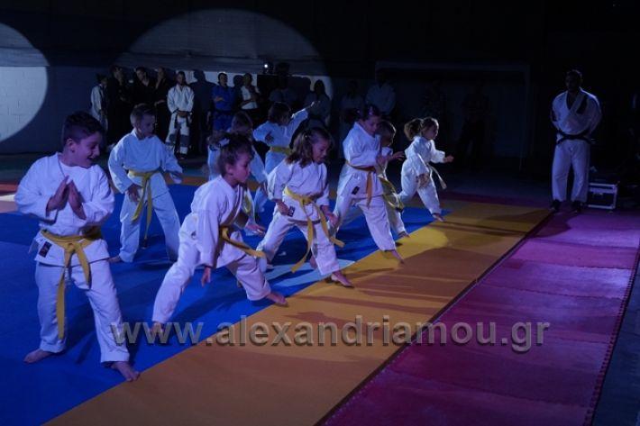 alexandriamou.gr_karate288086