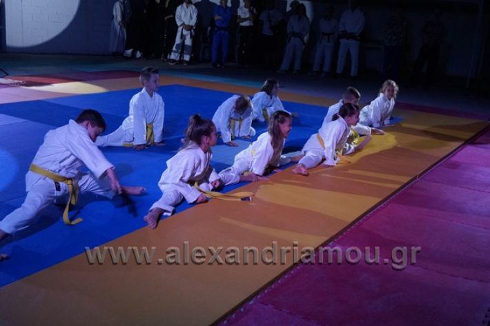 alexandriamou.gr_karate288087