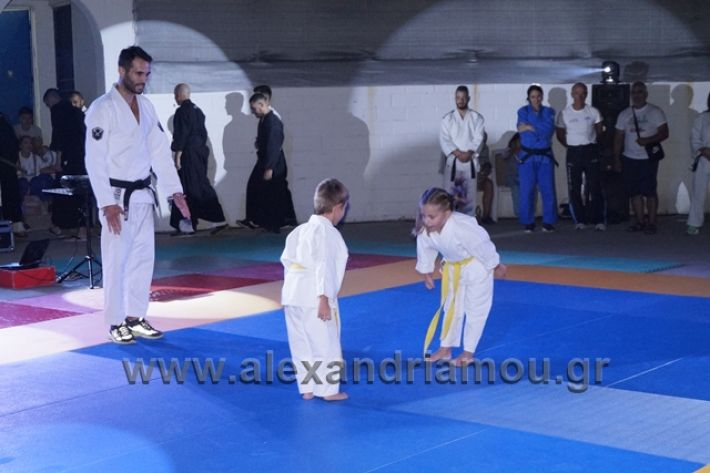 alexandriamou.gr_karate288090