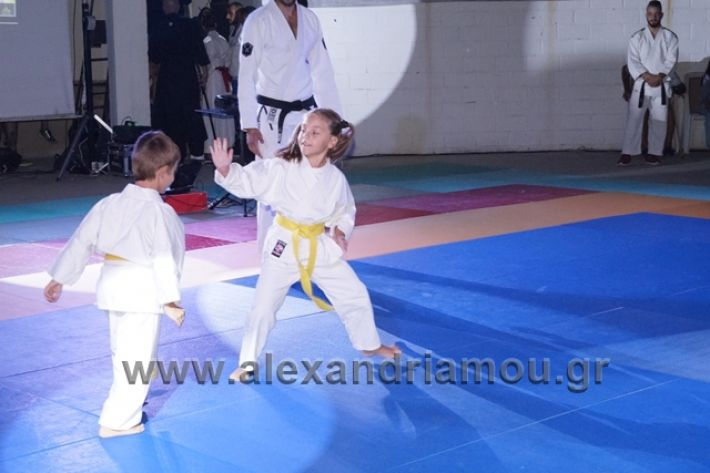 alexandriamou.gr_karate288092