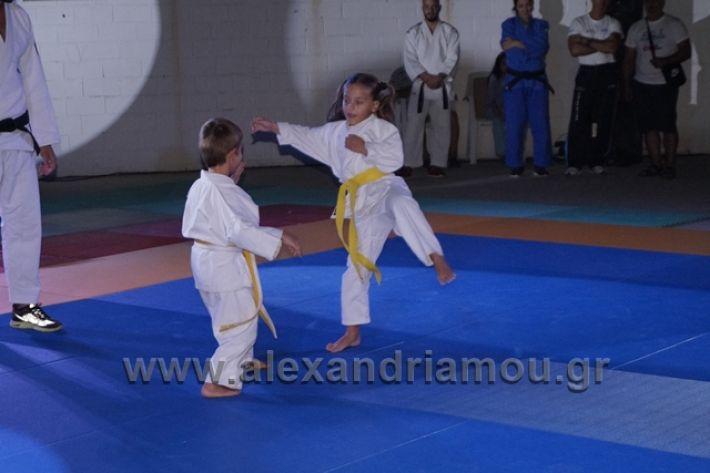 alexandriamou.gr_karate288093