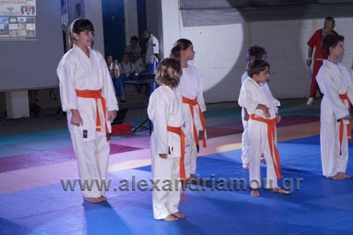 alexandriamou.gr_karate288094